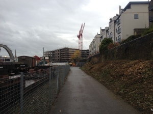 Showing the vegetation clearance next to the retaining wall