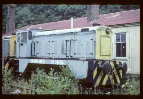 D2007 (TIBRUIT, HC D917/1956) and D2008 (GUINNION, HC D918/1956) at Plockton, 1981 (Photo courtesy Eddie Barnes)